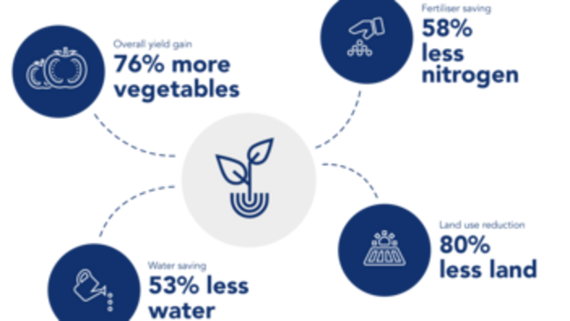 Graphic from Group Sustainability Report 2017 Gordan graphic no note below  See updated illustration  from 2018 report